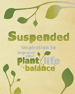Suspended Improve your plant life balance